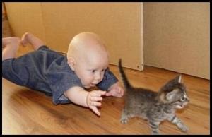 Про ребёнков и котов